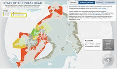 Visualising the state of the polar bear