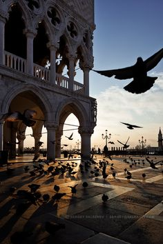 Venice sunrise - Piazza San Marco, Italy