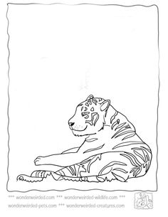 tiger coloring pages.html