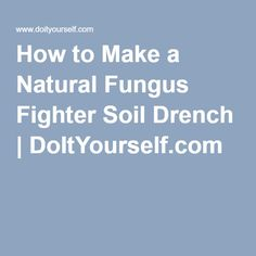 How to Make a Natural Fungus Fighter Soil Drench   DoItYourself.com