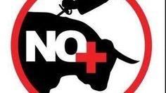 Petition · Abolicion de las Corridas de Toros en Chihuahua · Change.org