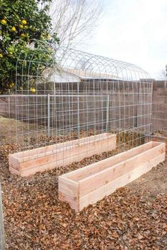 DIY Raised Garden Bed with Arched Trellis for vining veg's like squash and cucumbers. Healthier plants (more air circulation) and easier harvest access.