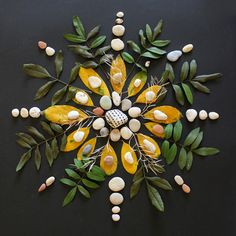 Still life photography is one of the longest enduring genres of photography. Learn the secrets of keeping this style vibrant and modern with these tips from ten experienced still life photographers. Land Art, Mandala Art, Pressed Flower Art, Environmental Art, Nature Crafts, Recycled Art, Outdoor Art, Crystal Grid, Art Plastique