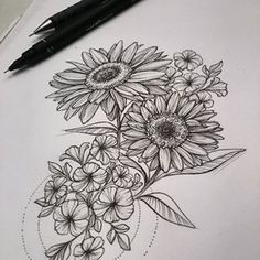 pencil sketches of sunflowers - Google Search
