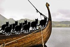 Science - Les Vikings naviguaient avec des chats
