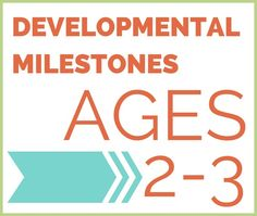 The developmental milestones your 2-3 year old will be working on this year. From fine motor to gross motor to sensory processing, big changes are coming!