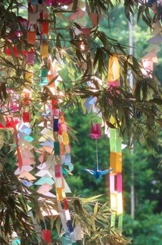 Party idea (minus the bamboo part)☆Tanabata--Japanese Star Festival July Wishes are written down on a piece of paper and then hanged in a bamboo tree in the hopes that it may come true! Star Festival, Japan Summer, Hotarubi No Mori, Japanese Bamboo, Dragon Birthday, Origami Paper Art, Bamboo Tree, Art Object, Watercolor Landscape