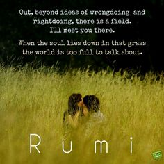 """Out beyond ideas of wrongdoing and rightdoing, there is a field. I'll meet you there. When the soul lies down in that grass, the world is too full to talk about"" -Rumi"