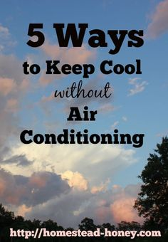 5 ways to keep cool this summer, without air conditioning!   Homestead Honey