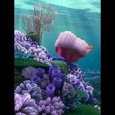 Korallenriffe – Korallenriffe sind Kolonien winziger Tiere, die in Meeresgewässern vorkommen, d … Coral Reefs- Coral reefs are colonies of tiny animals found in marine waters that contain few nutrients… - Sealife Fauna Marina, Underwater Life, Underwater Flowers, Ocean Creatures, Underwater Creatures, Tier Fotos, Sea And Ocean, Sea World, Ocean Life
