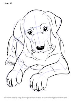 Dog Drawings In Pencil Easy For Kids Sketch Coloring Page Drawing