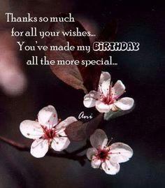Birthday Quotes QUOTATION – Image : As the quote says – Description Thank you for the Birthday Wishes Thank You Messages For Birthday, Thank You Wishes, Happy Birthday Wishes Quotes, Birthday Thanks, Birthday Wishes For Myself, Birthday Blessings, Birthday Wishes Cards, Happy Birthday Images, Happy Birthday Greetings