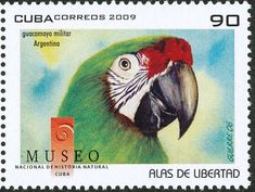Military Macaw stamps - mainly images - gallery format Birthday Card Sayings, Vintage Birthday Cards, Card Birthday, Birthday Quotes, Happy Birthday Images, Happy Birthday Greetings, Historia Natural, Commemorative Stamps, Postage Stamp Art