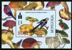 Guide to the World of Fungi on Stamps and other Postal Ephemera