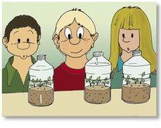 Cultiver dans une bouteille