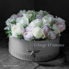 http://ange-d-amour.copyright01.com/