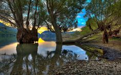 """""""Trees by the Water"""" -- #wallpaper by """"Giovanni Di Gregorio"""" from http://interfacelift.com -- At sunset, trees emerge from the water of Villetta Barrea's lake, in Abruzzo."""