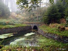 Upper Harz Water Regale, a UNESCO world heritage site in Germany Saxony Anhalt, Rhineland Palatinate, Lower Saxony, North Rhine Westphalia, Water Management, Bavaria, Heritage Site, Travel Destinations, Waterfall