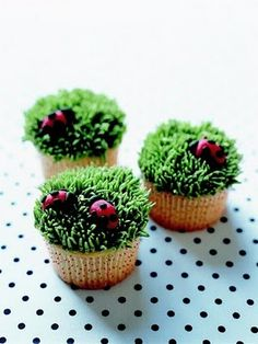 Ladybug cupcake. Aren't these the bees knees?!