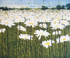 Phil Greenwood - Daisy Etching and aquatint