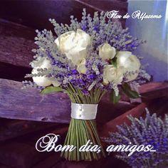 Flor de Alfazema - Google+