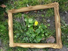 Auf der Such nach dem Frühling: eine tolle Spielidee für Kinder und Familien. Für einen Frühlingsspaziergang der anderen Art braucht Ihr nur einen alten Bilderrahmen und einen Fotoapparat. Sucht den Frühling und rahmt ihn ein. Dann flugs ein Foto gemacht und fertig ist die Natur-Kunst!