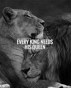 67 Great Inspirational Quotes & Motivational Words To Keep You Inspired - Trend True Quotes 2020 Great Inspirational Quotes, Motivational Words, Lioness Quotes, Lion Couple, Lion And Lioness, Lion Love, Lion Pictures, Warrior Quotes, Badass Quotes