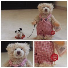 Timmy Teddy Bear from Hermann company along with his cat on a walk