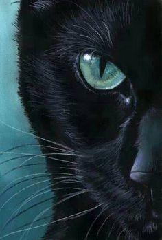 Eyes To Entrance And Hypnotise....I Look And Stare, Already Mesmerised! ~ c.c.c~ravenwhimsytumbler.com
