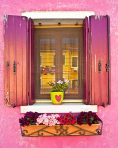 Window shutters photograph, flowerbox photo, pink wall, Italian colors, Burano Italy, red, italian flowers - Rose-Colored Window.