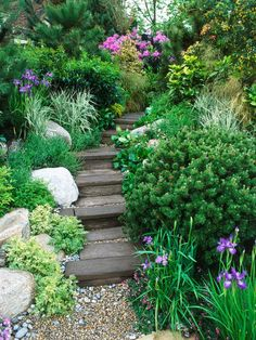 Another example of steps leading down a slope. A bit dense, but lovely plants. Courtesy: Garden Stairs : Landscaping : Garden Galleries : HGTV - Home & Garden Television ~EBM Hillside Garden, Sloped Garden, Garden Paths, Garden Landscaping, Garden Ideas River, Landscaping Ideas, Border Garden, Magic Garden, Dream Garden