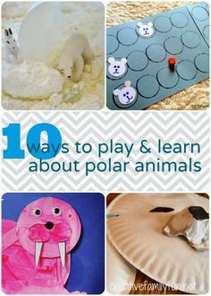 10 Ways to Play and Learn About Polar Animals ~ Creative Family Fun
