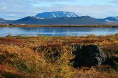 Eyjafjörður, Lac Mývatn, Islande#L'un des endroits les plus visités d'Islande en raison de la richesse de sa faune et de ses diverses particularités géologiques. Offrant une nature presque à l'état pur, le lac Mývatn est considéré comme le plus important lieu de rassemblement de canards en Europe. La partie la plus intéressante de la zone se trouve à l'est de Reykjahlíđ, la « ville » principale de la région.#http://urlz.fr/3hyq#events.artegis.com