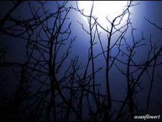 Shepherd Moons ~ Enya  The music my heart hears when I stand in beautiful Alaska.