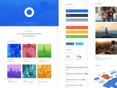 Optimize — Branding Style Guide