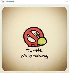 No smokeing