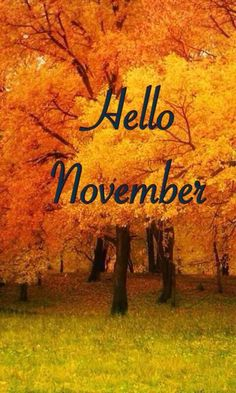 Hello November Hello November Hello November Hello November Hello November Hello November Hello November He Hello October Images, November Pictures, Hello November, Hades Disney, November Wallpaper, Fall Wallpaper, Squad Challenge, Welcome November, Autumn Scenes