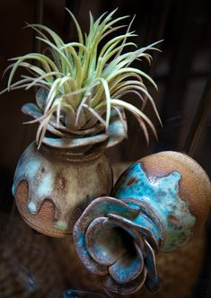 CeTerra has a wonderful selection of unique vessels. Visually artistic they are also a great idea to add more art into your home. Dripped glaze pots work extremely well with the Southwestern design. Desert Plants, Clay Crafts, Accent Decor, Contemporary Design, Home Accessories, Planter Pots, Succulents, Pottery, Amazing