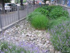 vorgarten mit steinen und gräsern | garten | pinterest, Garten Ideen