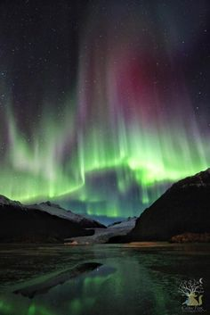Alaska     northern lights....even though this place isn't warm, it sure has a beautiful sight right here