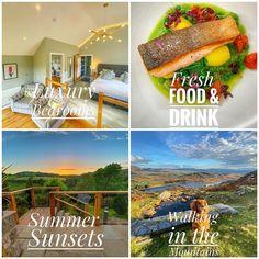 Pen-y-Dyffryn Hotel (@pen_y_dyffryn_hotel) • Instagram photos and videos Small Hotels, Summer Drinks, Photo And Video, Videos, Holiday, Photos, Instagram, Summer Beverages, Vacations