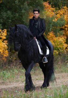 My two loves horses and Adam ! ADAMGASM!: