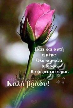 Good Morning Tuesday, Happy Tuesday, Good Morning Quotes, Good Day, Good Night, Monday Blessings, Just Saying Hi, Days Of Week, Blessed Sunday