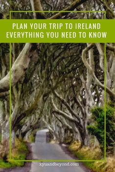 Plan your trip to Ireland, Everything you need to know when visiting Ireland #ireland #travelIreland #visitIreland #PlanIreland  via @https://www.pinterest.com/xyuandbeyond/