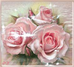 flores encontradas en la web