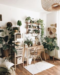 Plant decor, bedroom decor, bedroom plants, living room plants decor, handmade home Room Ideas Bedroom, Home Decor Bedroom, Diy Home Decor, Decor Room, Living Room Plants Decor, Study Room Decor, Bohemian Bedroom Decor, Bedroom Small, Decor Crafts