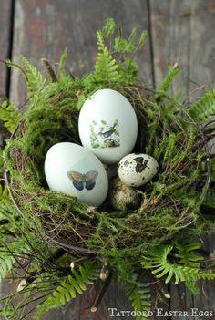 Här kommer mer fina ägg. Det blir en fin vårkänsla att mixa ägg och grönt, gärna vårlökar, mossa eller ormbunke.