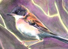 oiseaux #2 - Anaïs Massini