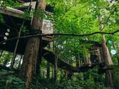 Live the high life in a stylish tree house --> http://www.hgtvgardens.com/photos/decorating-photos/the-high-life-a-charming-city-treehouse#?soc=pinterest