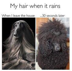 Funny Beauty Memes | POPSUGAR Beauty Photo 21